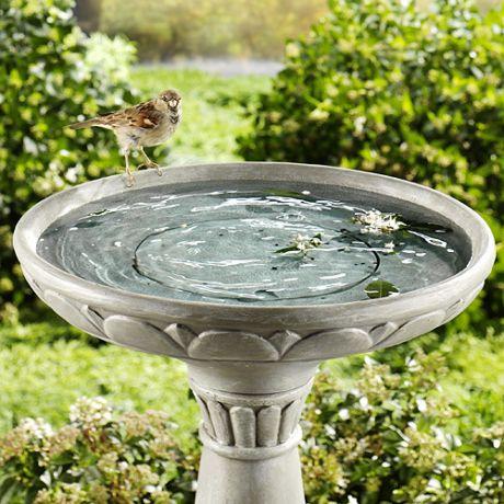 Фото - купальня для птахів приверне в сад пернатих