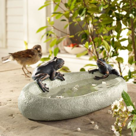 Фото - Власникам цікавою купальні співатимуть птахи