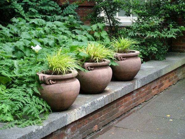 Фото - Приземкуваті вазони для квітів уздовж садової доріжки