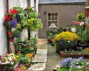 Квіткові кашпо - різноманітність варіантів, як зробити і прикрасити своїми руками