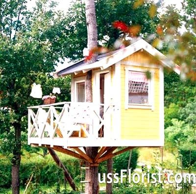 Будинок на дереві - мрія з дитинства