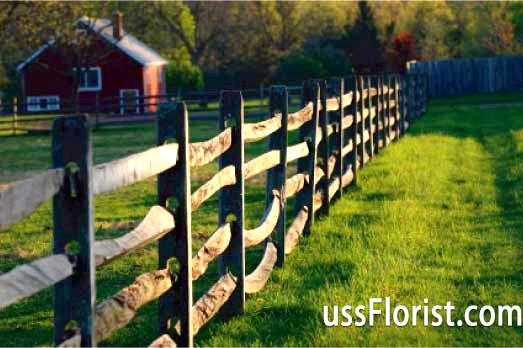Фото - Декоративні дерев'яні паркани для дачі