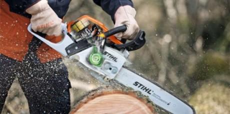 Фото - Розкряжування стовбура дерева