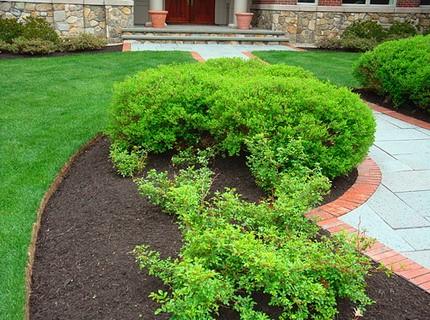 Фото - Бордюр клумби та газону, викладений тротуарною плиткою