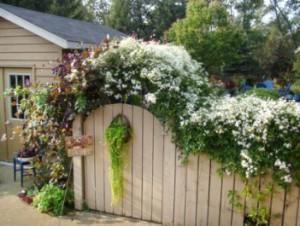 Як прикрасити паркан на дачі своїми руками?