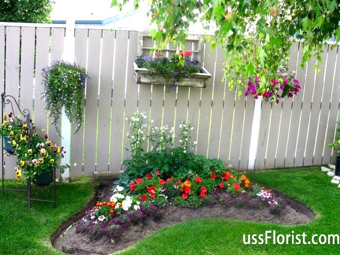Як вибрати і розмістити на ділянці садові квіти