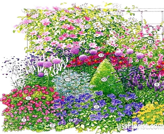 Міксбордери або змішані бордюри - краща прикраса саду
