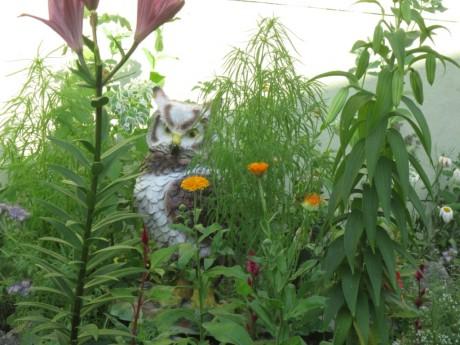 Фото - фігурка сови на тлі рослин