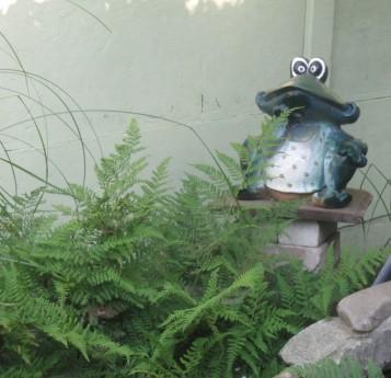 Фото - керамічна жаба серед зелені