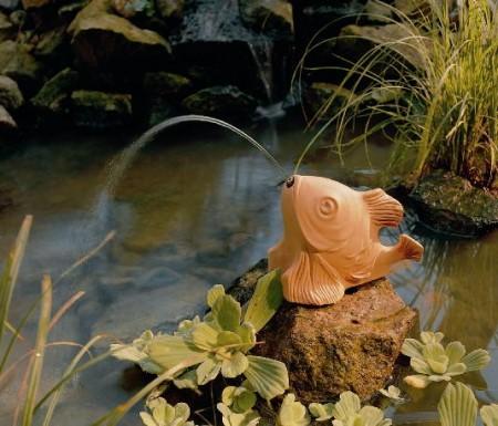 Фото - рибка
