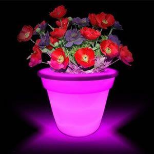 Фото - садовий вазон з незвичайною підсвічуванням