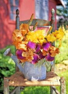 Фото - дизайнерський елемент вінтажного саду