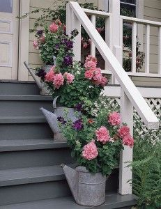 Фото - ряд квіткових горщиків зі старих лійок