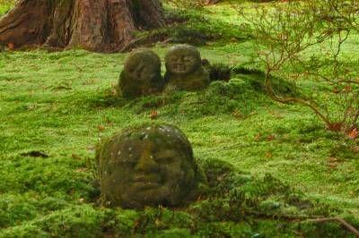 Фото - покриті мохом кам'яні статуї