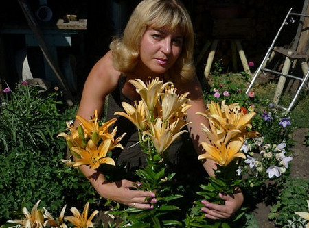 Фото - краса квітів