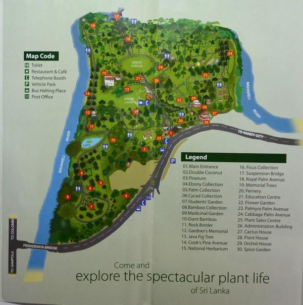 Фото - Карта саду