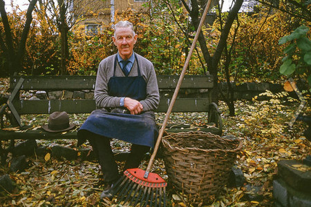 Фото - прибирання саду