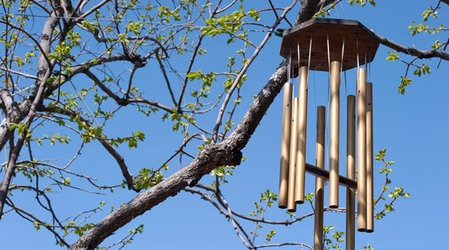 Фото - музика вітру в саду