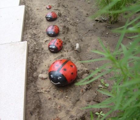Фото - сімейство кам'яних сонечок