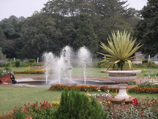 Фото - декоративні фонтани в центрі присадибної ділянки
