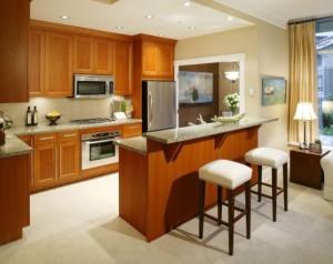 Варіанти і стилі дизайну барних стійок для кухні