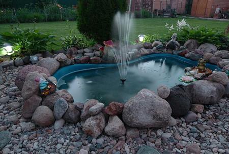 Фото - водойми в саду
