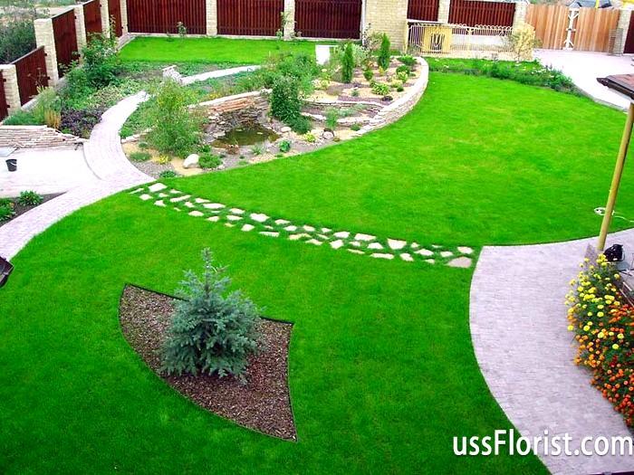 Фото - Як посадити газон своїми руками