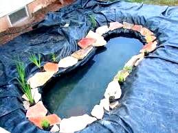 Декоративний ставок в саду