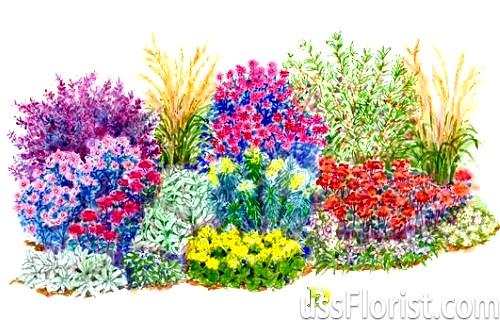 Дизайн квіткових клумб