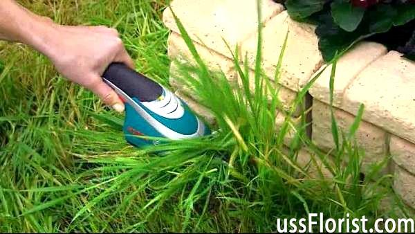 Як вибрати ножиці садові електричні