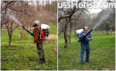 Садові обприскувачі з бензиновими двигунами – фото