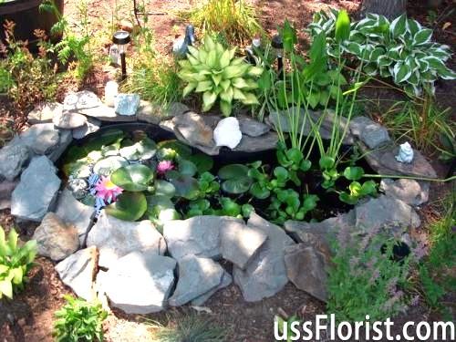 Маленький водойму в саду
