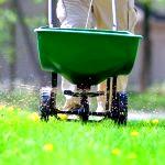 Мінеральні і органічні добрива для газонної трави