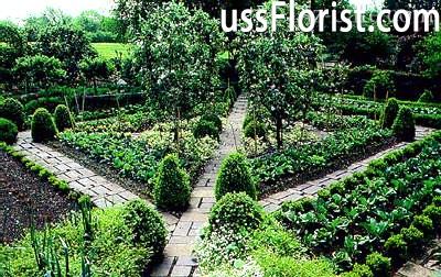 Регулярний стиль в ландшафтному дизайні: характерні риси та підбір рослин