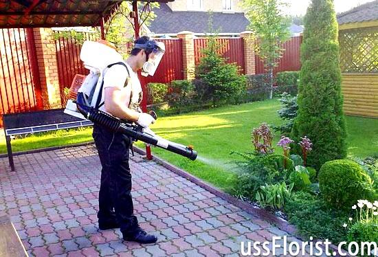 Садовий обприскувач на акумуляторі