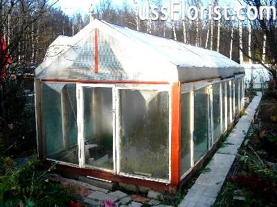 Матеріал даху в теплиці – фото