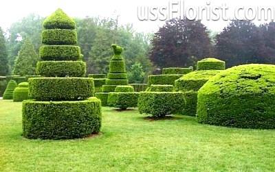 Сад скульптур топіарі – фото