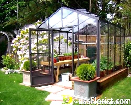 Пристрій садових теплиць. Вибираємо форму, каркас, фундамент